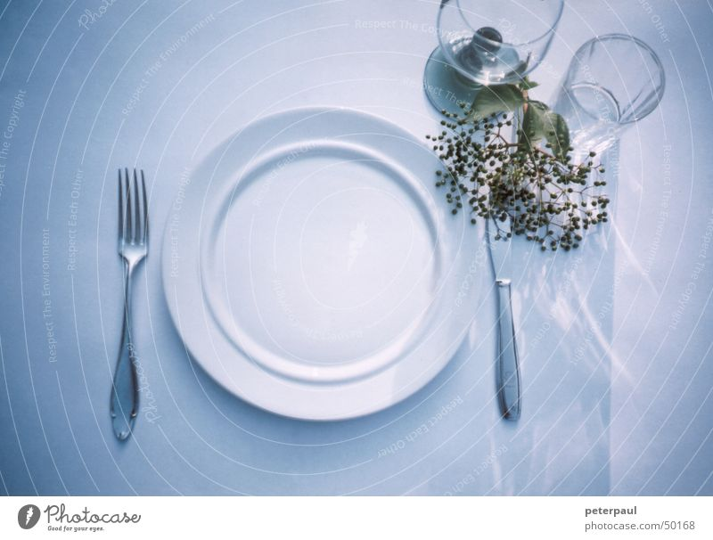 Finely covered Set meal Fork Plate Wine glass Table Evening sun Summer evening Knives Glass Reflection Blue