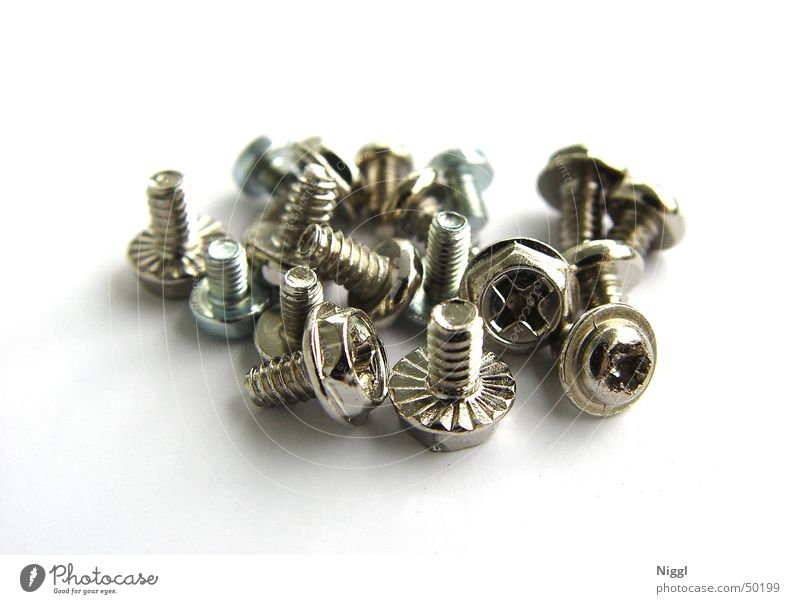a herd of screws Screw Craft (trade) Metal Screw thread Macro (Extreme close-up) niggl