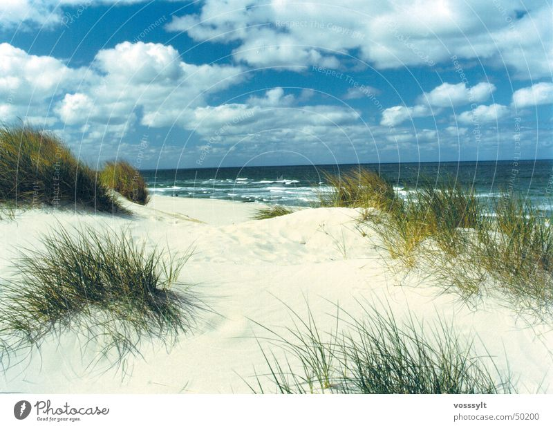 Lister Dunes Beach Sky Beach dune most beautiful place on sylt Scan