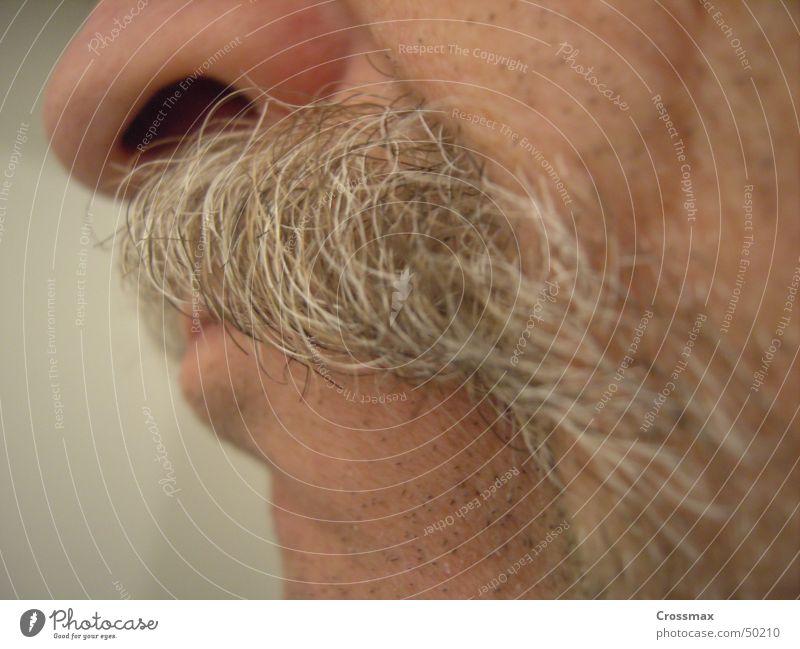 Man Old Face Senior citizen Hair and hairstyles Head Mouth Skin Nose Lips Facial hair Cheek Grimace Moustache Chin Beard hair