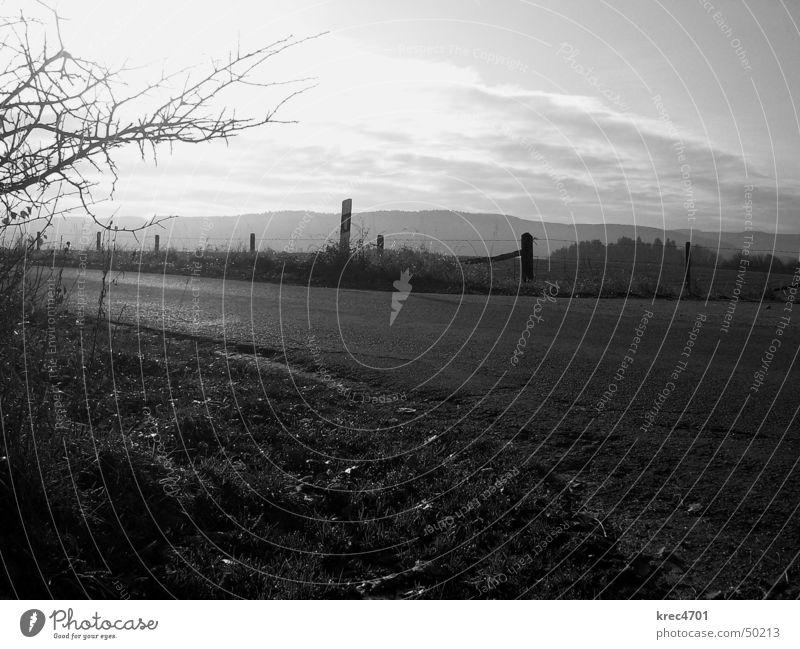 Sky Nature Sun Loneliness Far-off places Landscape Street Meadow Autumn Footpath Dazzle Narrow Eifel Pothole