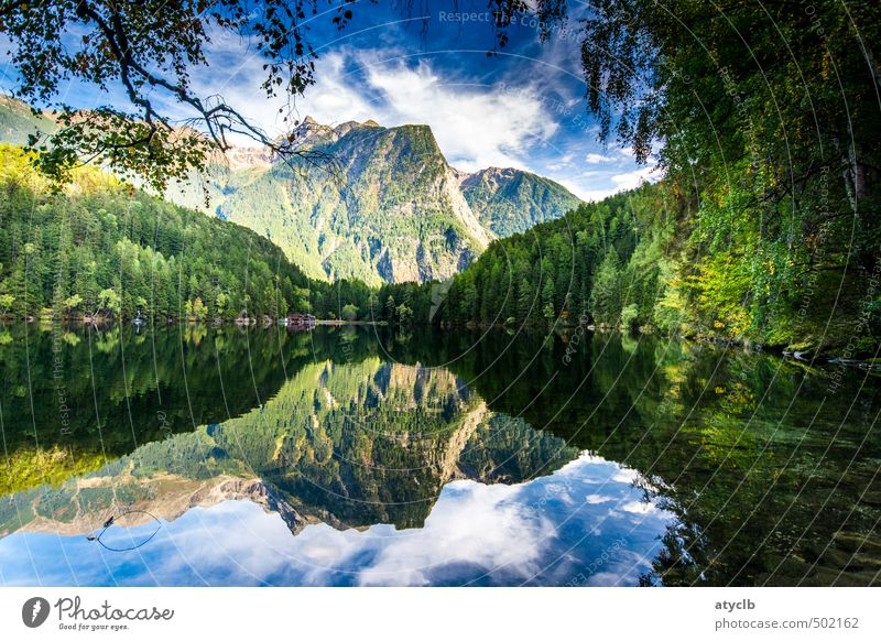 Lake Piburg Harmonious Relaxation Calm Meditation Swimming & Bathing Vacation & Travel Tourism Trip Summer Mountain Hiking Aquatics Environment Nature Landscape