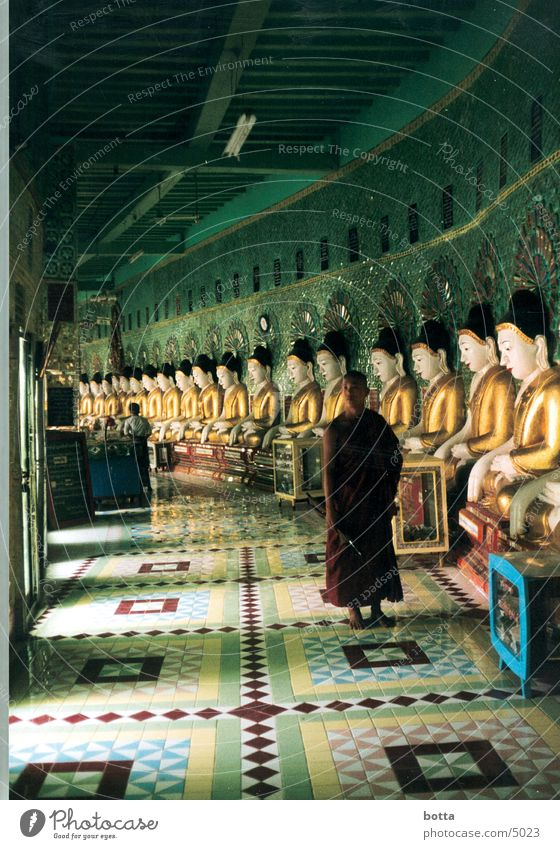 Human being Green Gold Asia Americas Temple Myanmar Monk Clergyman