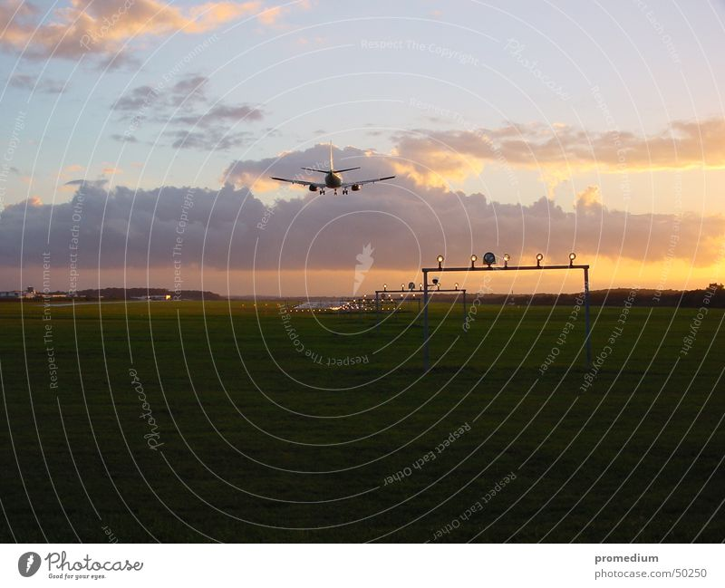 Vacation & Travel Airplane Airport Airplane landing Dusk Runway Passenger plane Landing strip lights