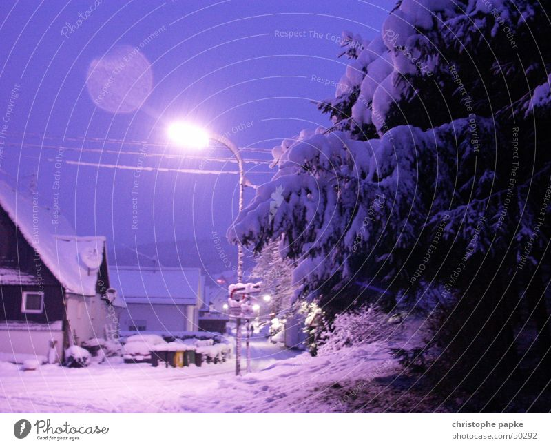 White Blue Tree Winter House (Residential Structure) Cold Snow Lanes & trails Romance Violet Village Fir tree Street lighting Fairy tale Surrealism Bad weather