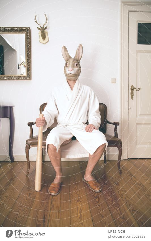 AGGRO HASE IV Living or residing Flat (apartment) Masculine Young man Youth (Young adults) Man Adults 1 Human being 18 - 30 years 30 - 45 years Animal