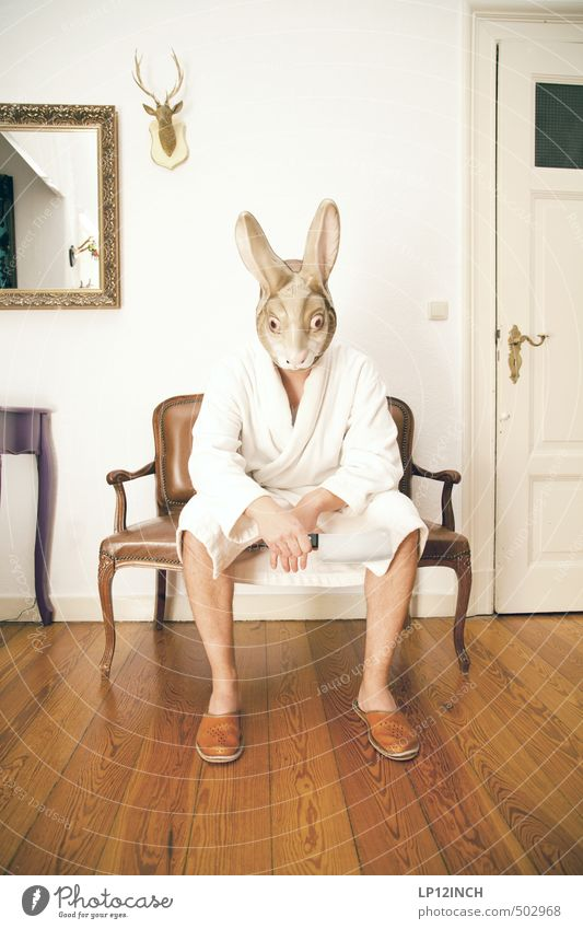 AGGRO HASE II Living or residing Flat (apartment) Interior design Decoration Masculine Young man Youth (Young adults) Man Adults 1 Human being 18 - 30 years