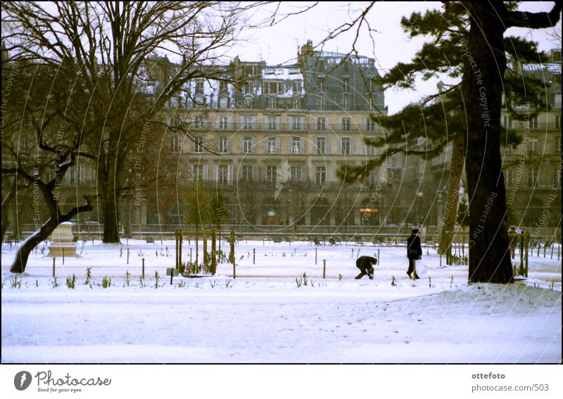 Winter Snow Park Paris