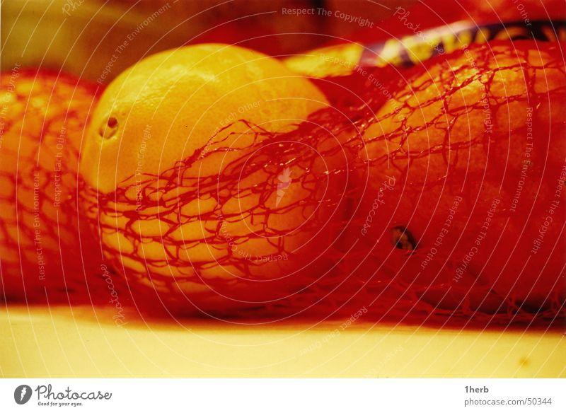 orange Vitamin Winter Healthy Fruit ornage