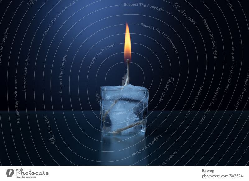 Ice cube candle Winter Warmth Jump Blaze melt dew Candle Candlewick Flame Burn Hot Dark Reflection Contrast Converse Cold Colour photo Studio shot