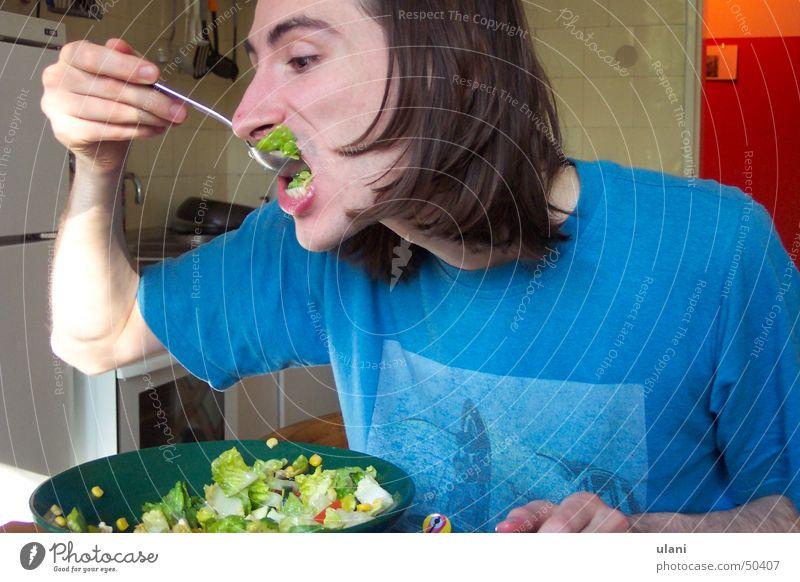 the salad greed Man Avaricious Kitchen Brunette Summer Crazy Lettuce Nutrition Appetite vegetarian.