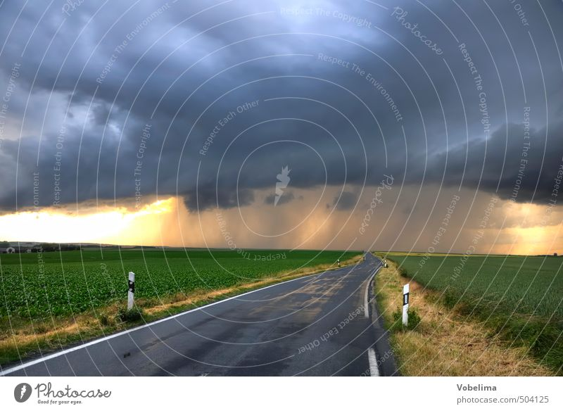 Country road during thunderstorms Landscape Clouds Storm clouds Weather Bad weather Thunder and lightning Field Transport Traffic infrastructure Road traffic