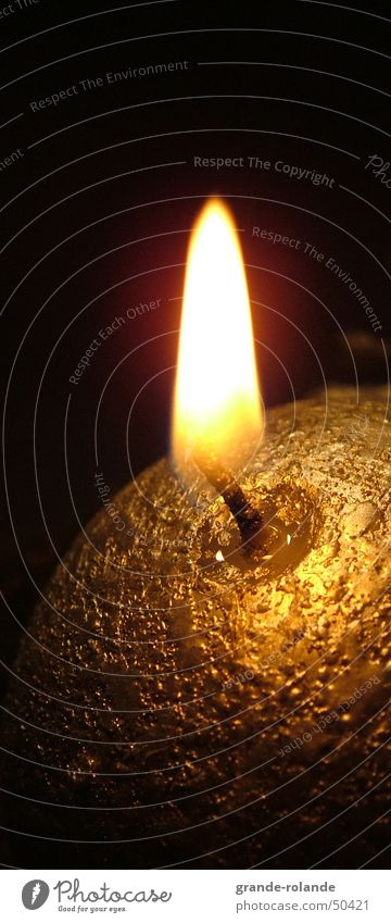 Christmas & Advent Warmth Gold Candle Physics Cozy Illuminate Candlelight Wax Candlewick