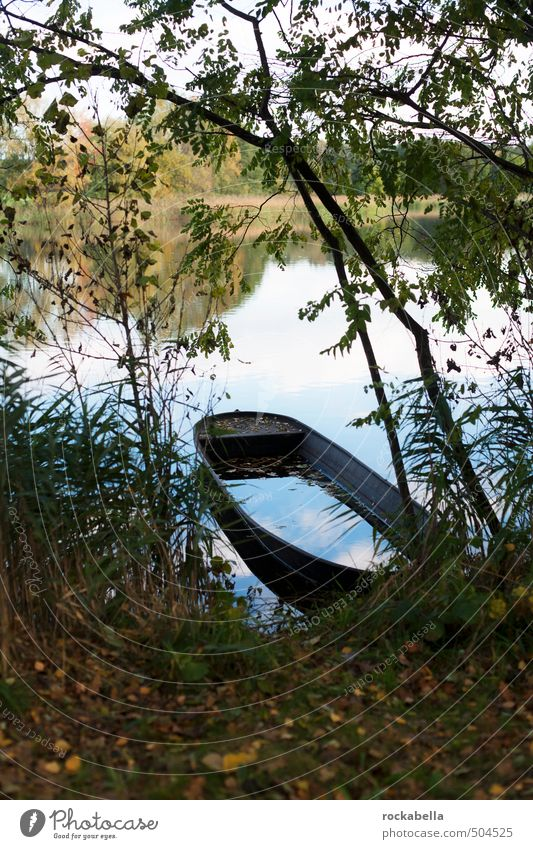 Boat on pond Environment Nature Autumn Tree Lakeside Watercraft Contentment Subdued colour Exterior shot Deserted Shallow depth of field