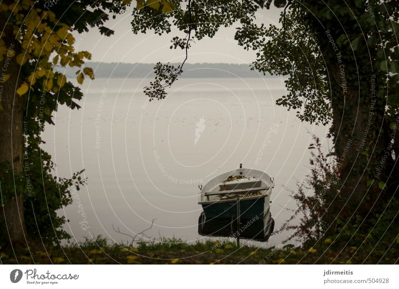 berth Leisure and hobbies Vacation & Travel Trip Environment Nature Landscape Water Autumn Weather Tree Grass Bushes Lakeside Rowboat Gray Watercraft