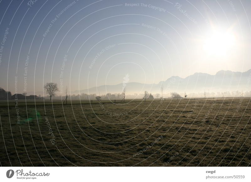 sun comes up, v3.0 Morning Field Sunrise Switzerland Austria Rhein valley Plain Rural Cold Exterior shot Mountain Blue sky Alps Frost frosty Pasture gets warmer