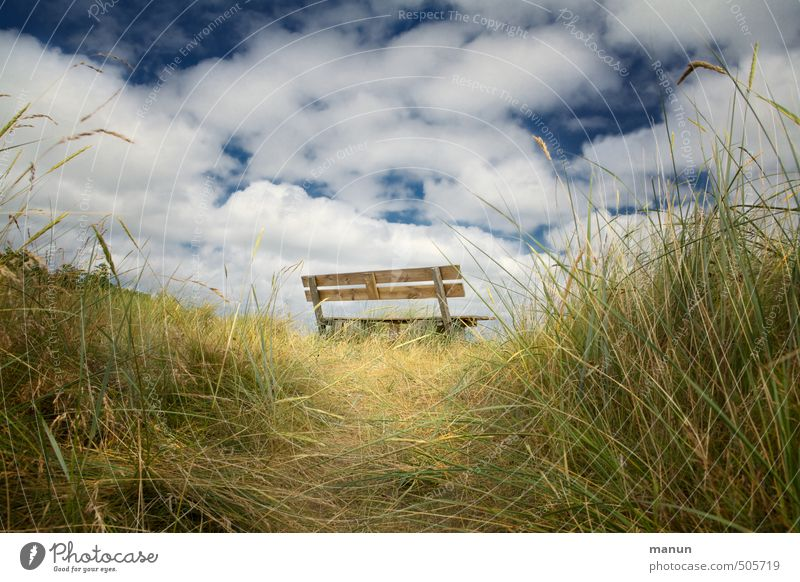 break area Relaxation Calm Nature Air Sky Grass Bushes Meadow Hill Wooden bench Natural Vacation & Travel Idyll Break Perspective Colour photo Exterior shot