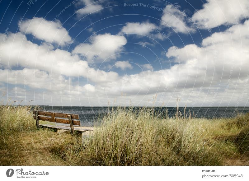 Frisian bench Nature Landscape Sky Clouds Weather Beautiful weather Coast Beach Bay North Sea Ocean Island Bench Calm Relaxation Experience Vacation & Travel