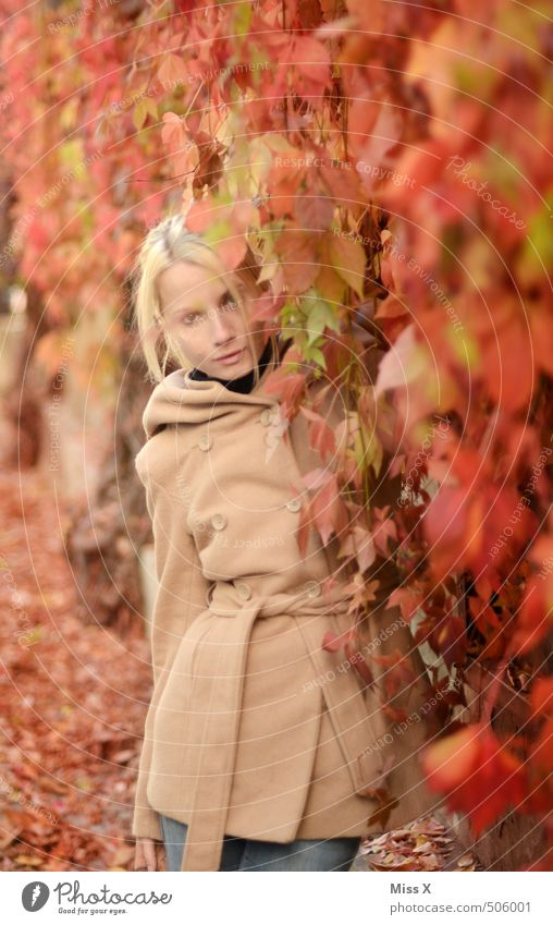 Human being Woman Nature Youth (Young adults) Beautiful Red Leaf 18 - 30 years Adults Emotions Feminine Autumn Hair and hairstyles Fashion Moody Blonde