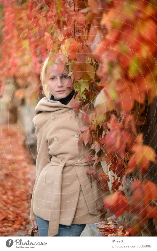 Human being Youth (Young adults) Beautiful Plant Red Young woman Leaf 18 - 30 years Adults Feminine Autumn Garden Blonde Vine Coat Faded