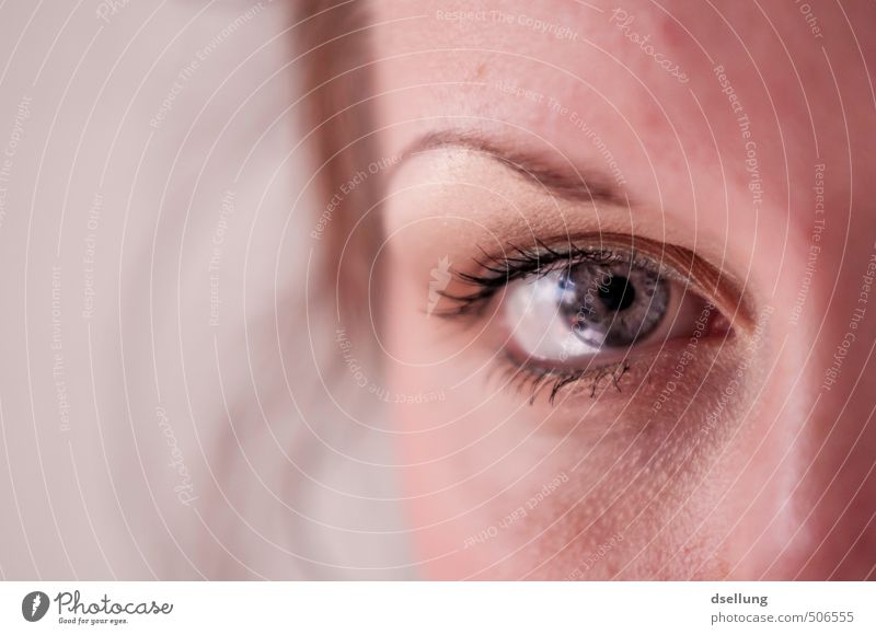 eye contact Feminine Young woman Youth (Young adults) Skin Face Eyes 1 Human being 18 - 30 years Adults Observe Simple Beautiful Near Orange Pink Red White