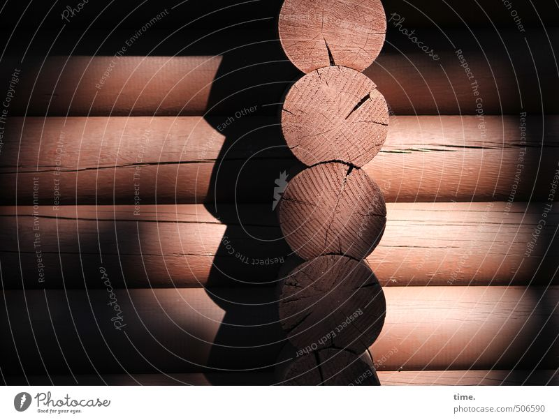 Thick boards Beautiful weather heartwood Tree trunk House (Residential Structure) Hut Manmade structures Building Wooden house Construction