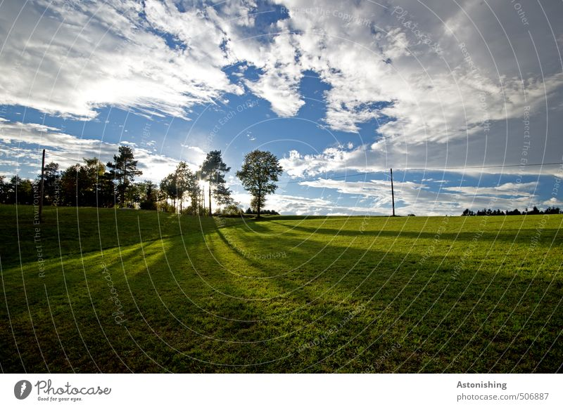 Long shadows Environment Nature Landscape Plant Sky Clouds Horizon Sun Summer Weather Bad weather Warmth Tree Grass Meadow Forest Hill mill district Stand Dark