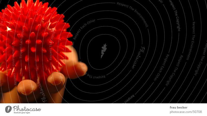 hedgehogs Massage Hedgehog Hand Round Red Black Ball Sphere massage ball Thorn Point