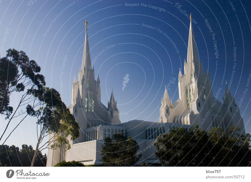 Sky White Tree Green Blue Building 2 Religion and faith Architecture Gold Point Gothic period Temple House of worship Trumpet