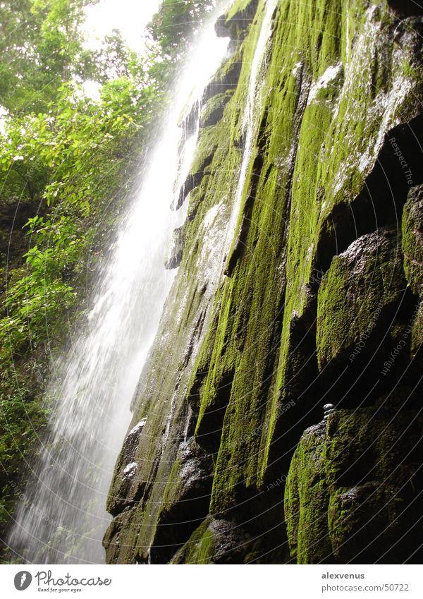 waterfall in costa rica Costa Rica Virgin forest Waterfall Green Nature