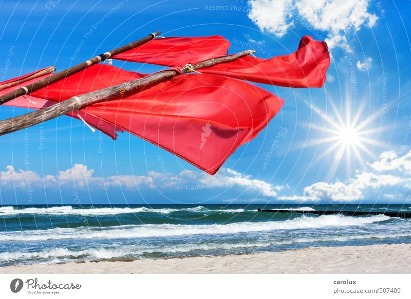Red Signal Flags at the Baltic Sea Beach Summer Nature Wind Creativity Optimism Europe Germany Maritime National Park Coast Sky Ocean Sun Sunbeam Buoy Fisherman