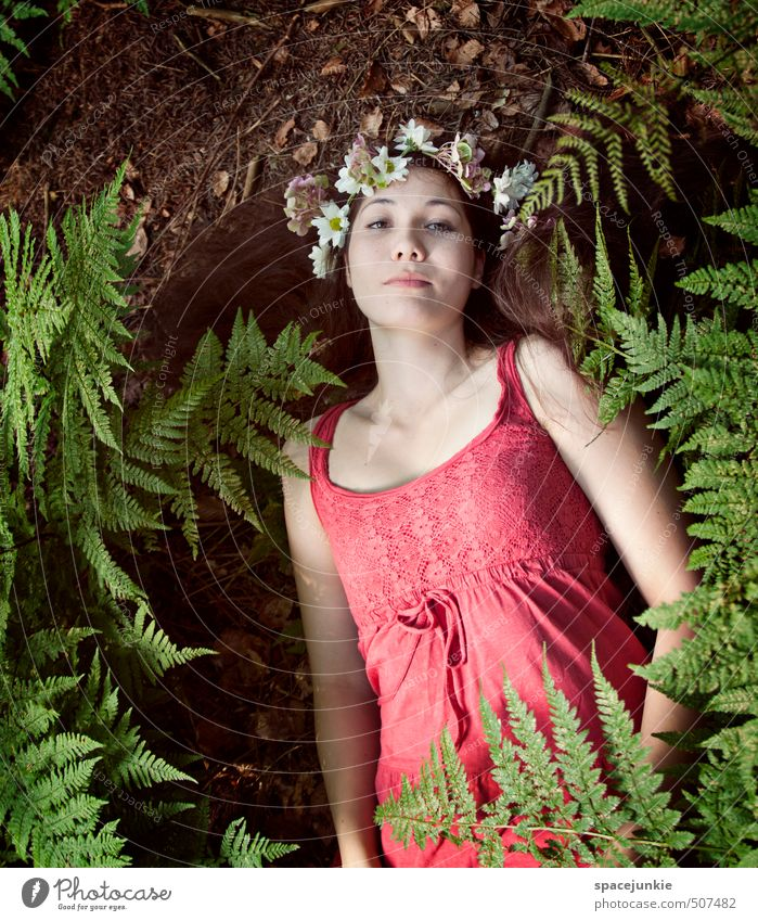 IN THE WOODS Human being Feminine Young woman Youth (Young adults) Woman Adults 1 18 - 30 years Environment Nature Landscape Earth Summer Autumn Flower Fern