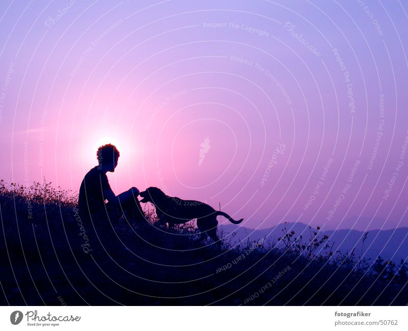 Best friends! Friendship Dusk Sunset Affection Dog Trust Evening Mountain Human being Freedom Life alpenglow Shadow Loneliness