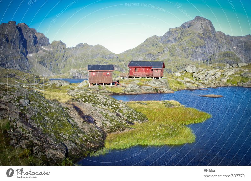 Lofoten XVII Healthy Well-being Contentment Senses Relaxation Calm Vacation & Travel Tourism Trip Adventure Far-off places Freedom Nature Landscape Rock
