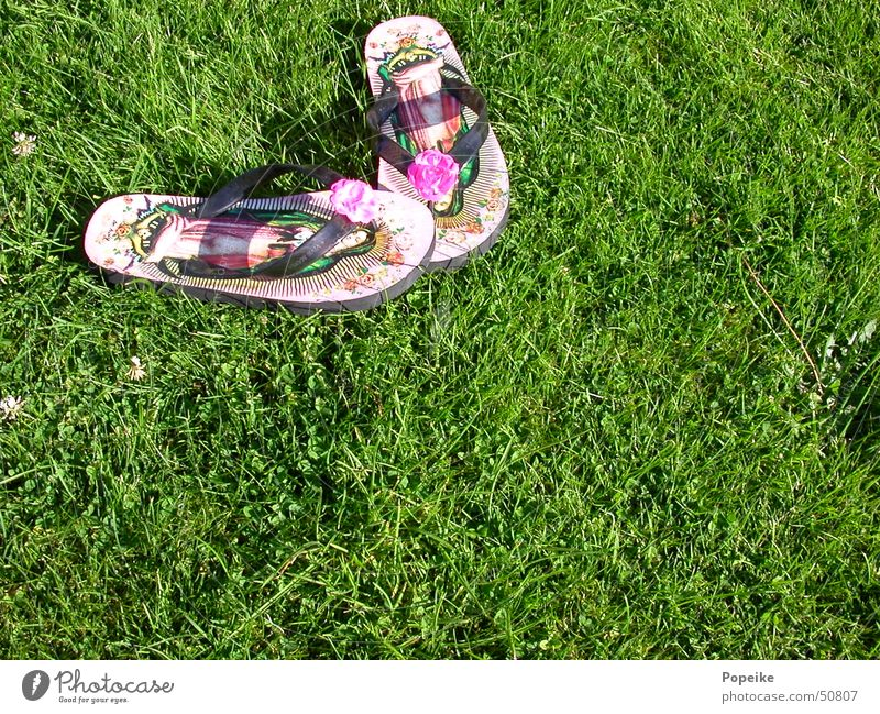 Flip flops on the lawn Flip-flops Kitsch Meadow Green Structures and shapes Virgin Mary Religion and faith Catholicism Hardcore Rockabilly Summer Fashion