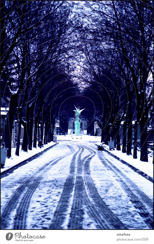 Cemetery Montparnasse / Paris Winter Cold Montparnasse Station Snow taure Sadness