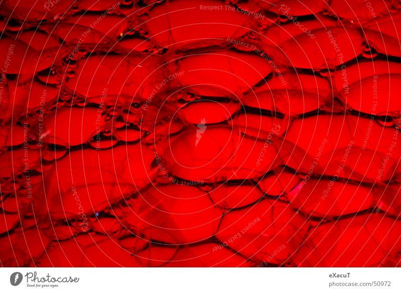 Water Red Delicate Fluid Bubble Transparent Fragile Sensitive Soap