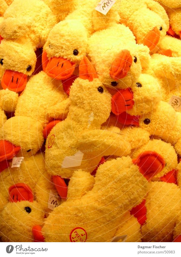 so many ducks Colour photo Infancy Animal Cuddly toy Cute Many Soft Yellow Multiple Cuddling Duck Heap Goods Animal figure