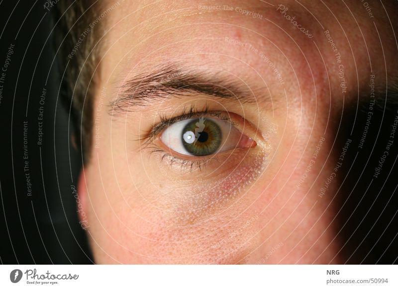 occhio Eyebrow Eyelash Portrait photograph Eyes Looking Perspective Macro (Extreme close-up)