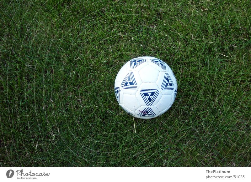 Football on lush grass Grass Green Juicy Fresh Meadow Round Playing Exterior shot Ball Soccer Germany Joy Freedom
