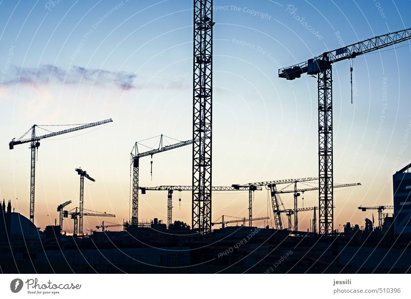 cranes Town Work and employment Movement Hang Carrying Far-off places Gigantic Blue Orange Black Calm Integrity Unwavering Fatigue Claustrophobia Stress Berlin