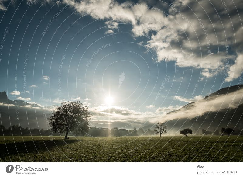 Morning hour II Environment Nature Landscape Earth Sky Clouds Sun Sunrise Sunset Sunlight Autumn Beautiful weather Fog Plant Tree Meadow Field Forest Hill Rock