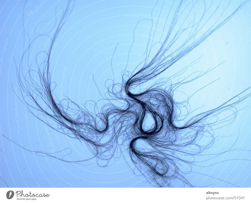 Blue Black Hair and hairstyles Line Long Tasty Joint residence