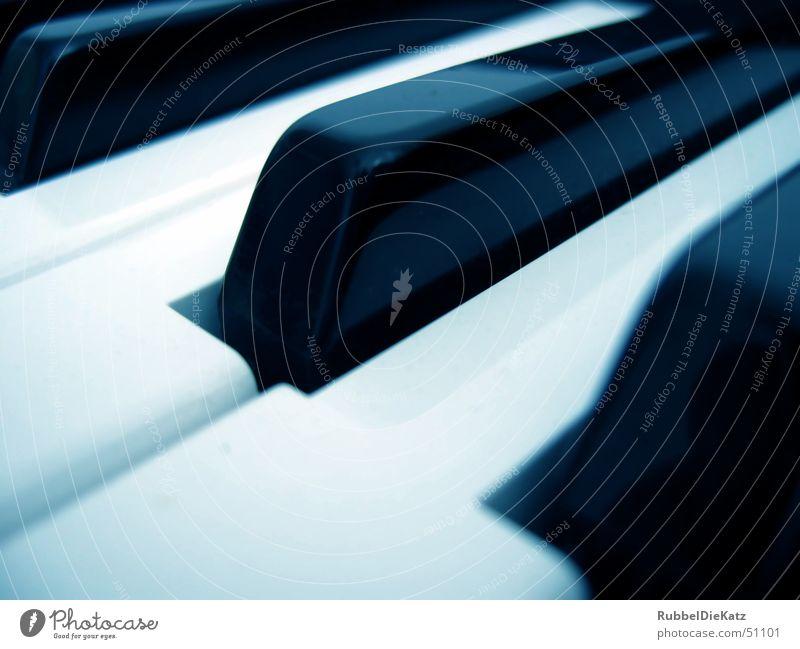 Key's Blue tint Black White Tone Synthesizer Music Technology Sound producing