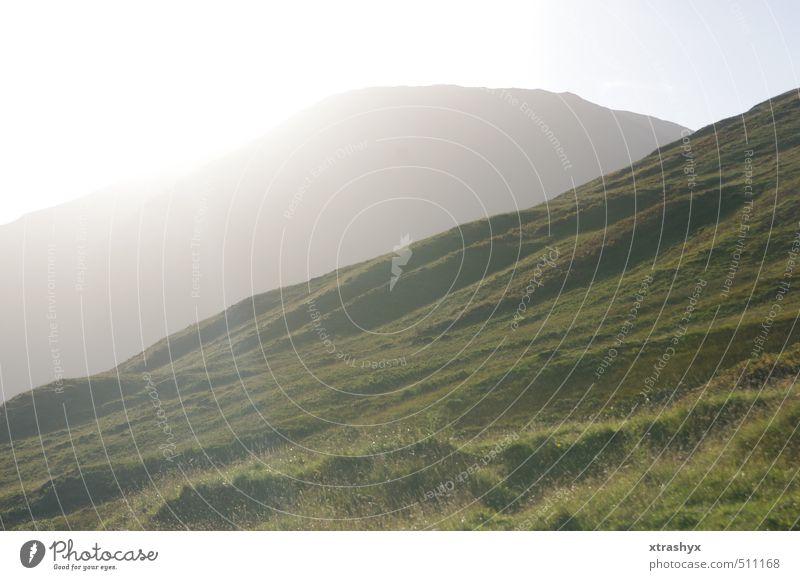Scotland's most beautiful side (Glencoe Valley) Environment Nature Landscape Plant Animal Elements Sky Sun Sunlight Autumn Beautiful weather Grass Moss Meadow