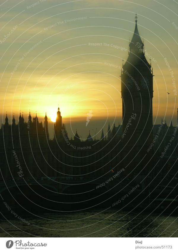 BigBen London Big Ben Sunset Themse Black Yellow Skyline Tower Water Houses of Parliament Silhouette Dusk Spire Famous building Famousness Historic Buildings