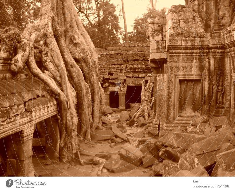 Tomb Raider Temple, Cambodia Ta Prohm temple Manmade structures tomb raider temple Sepia
