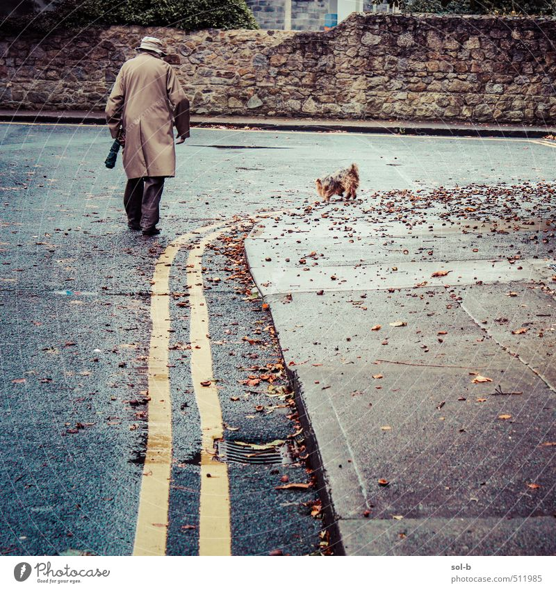 suburbia Dog Human being Woman Nature Man Old Leaf Animal Adults Cold Wall (building) Street Life Senior citizen Autumn Lanes & trails