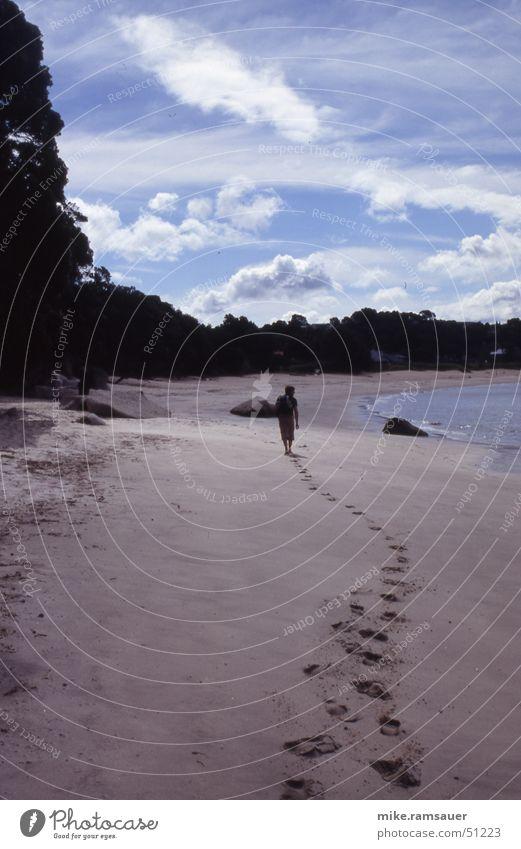 Human being Feet Sand Coast Search Tracks Row Footprint