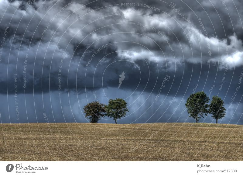 trees Nature Landscape Plant Air Sky Clouds Storm clouds Summer Weather Bad weather Wind Rain Thunder and lightning Tree Field Hill Moody Power Romance Calm